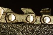 Minigodzille