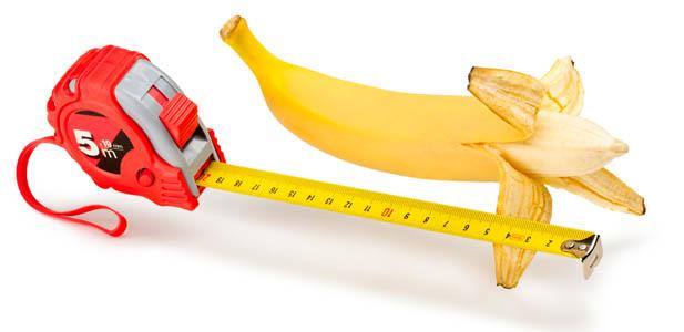 Długość penisa