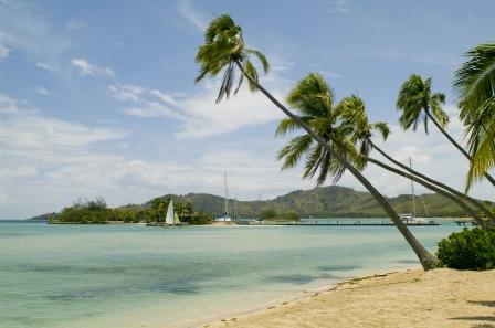 7 Fidżi.jpg