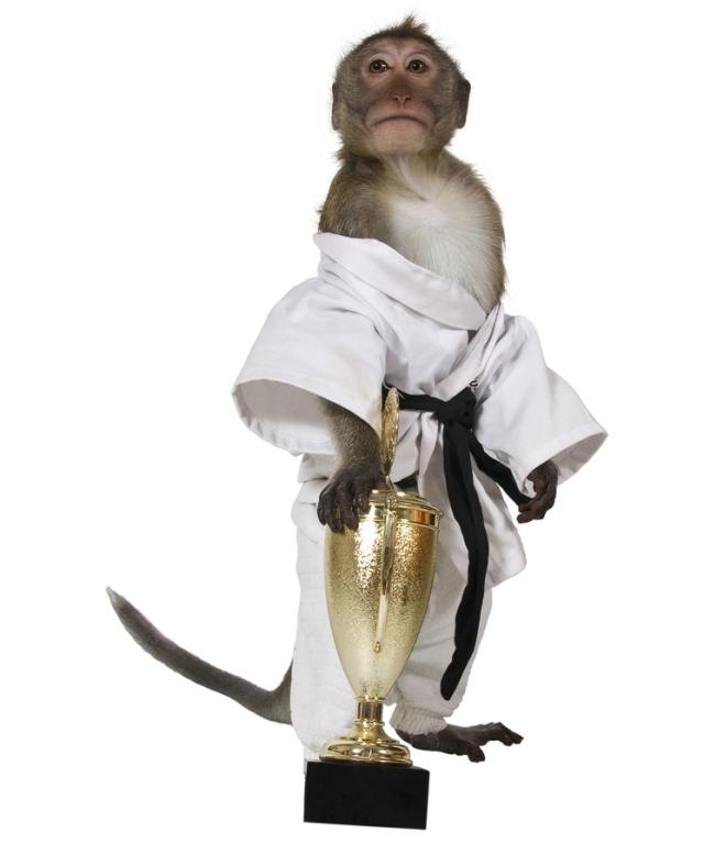 małpka.jpg