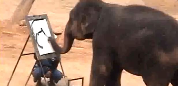 slon maluje.PNG