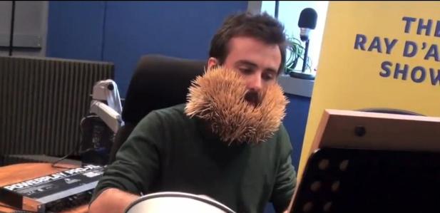 wykałaczki w brodzie