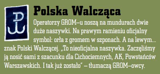 grom_polska.jpg