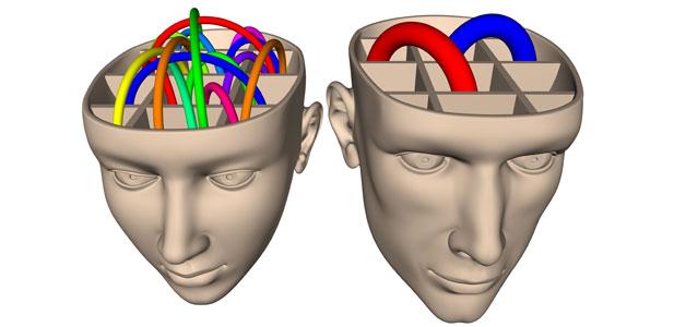 mózg kobiety a mózg mężczyzny