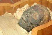 Mumia na strychu