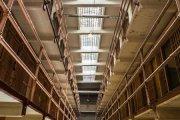 Prostytutki, koguty, pawie w więzieniu