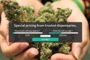Porównywarka cen zioła