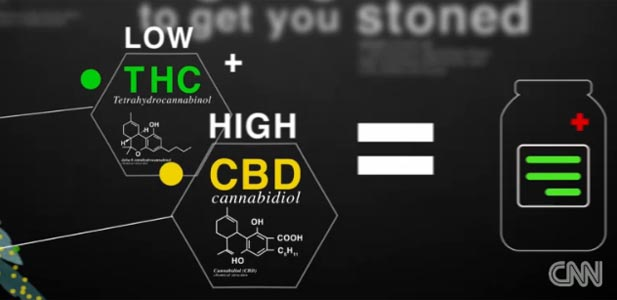 marihuana lek
