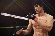 Bruce Lee w UFC