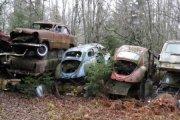 Cmentarzysko aut
