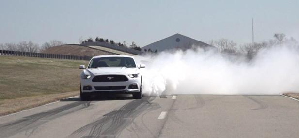 Mustang guma 3.jpg