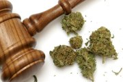 Kolumbia zalegalzuje marihuanę?
