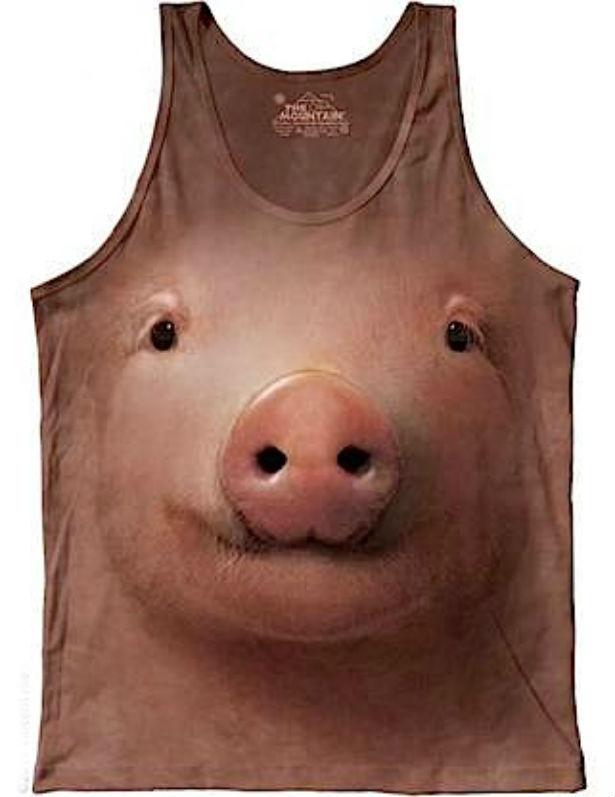 swinia.jpg