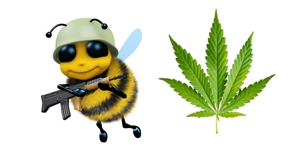 pszczoła marysia.jpg
