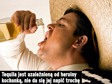 make_alko_tequila.jpg