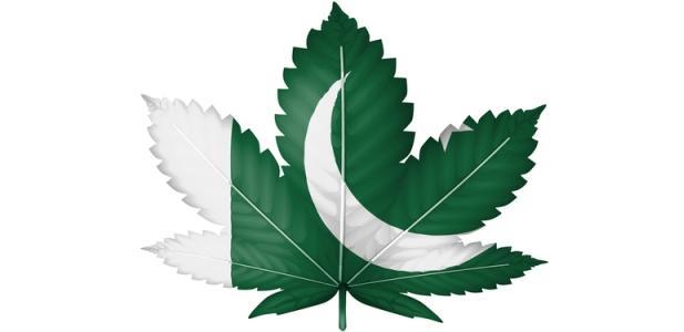 pakistan marihuana