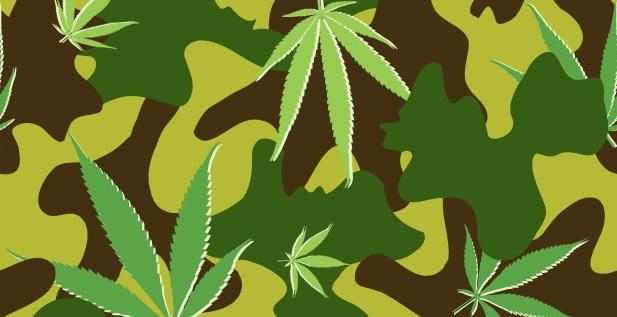 marihuana wojsko