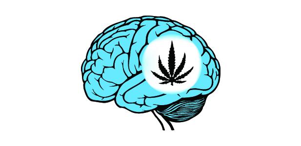 mózg marycha.jpg
