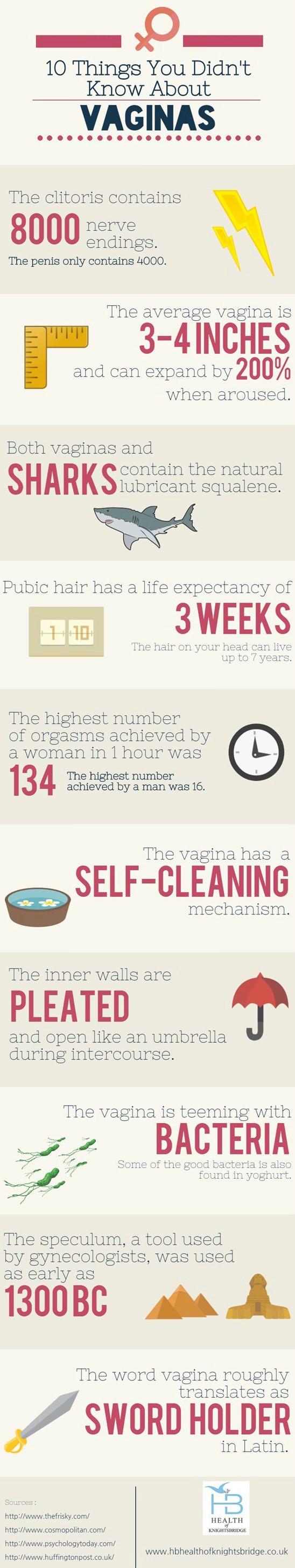 10 prawd o waginie.jpg