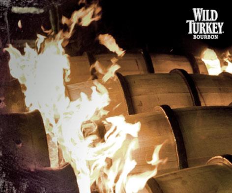 5Wild-Turkey.jpg