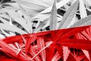 Lecznicza marihuana już w Polsce