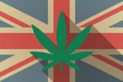 Emigracja do UK za ziołem
