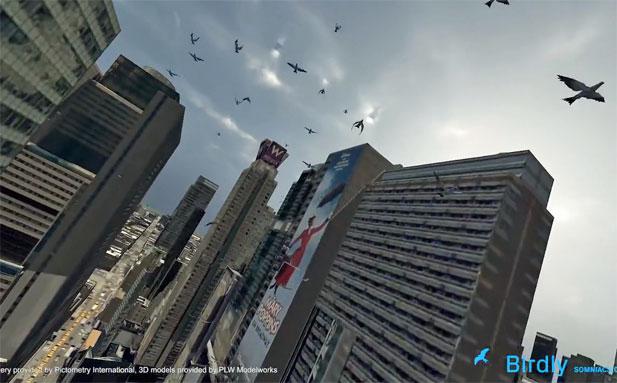 birdly.jpg