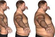 Jak długa przerwa na siłowni wystarczy, aby stracić formę?