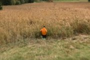 Candide Thovex na zielonym stoku