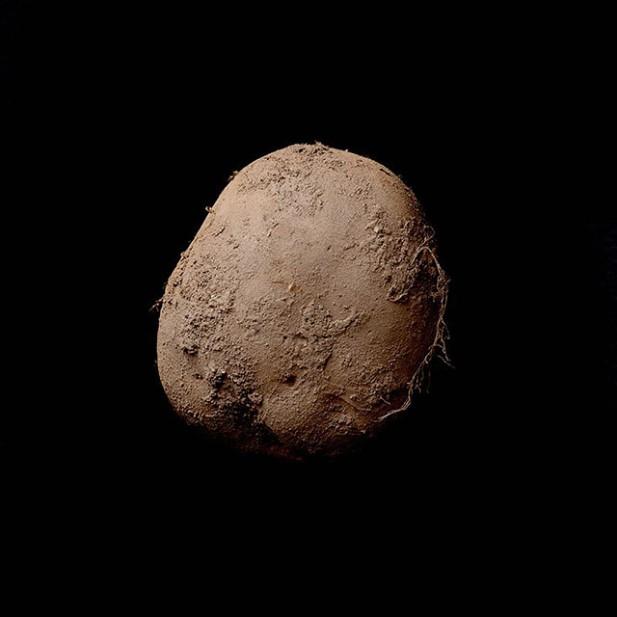 potatophoto.jpg