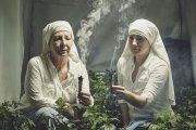 Zakon uprawiający zioło