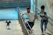 Pies-Cerber - kolejny wkręt