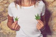 Tampony z marihuaną