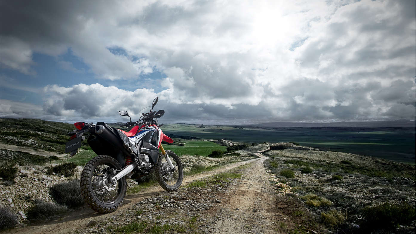 Honda CRF250 Rally.jpg