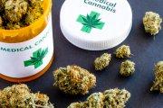 Sprzedaż medycznej marihuany legalna w Polsce od 31 października