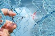 Muzyka zapisywana w kodzie DNA