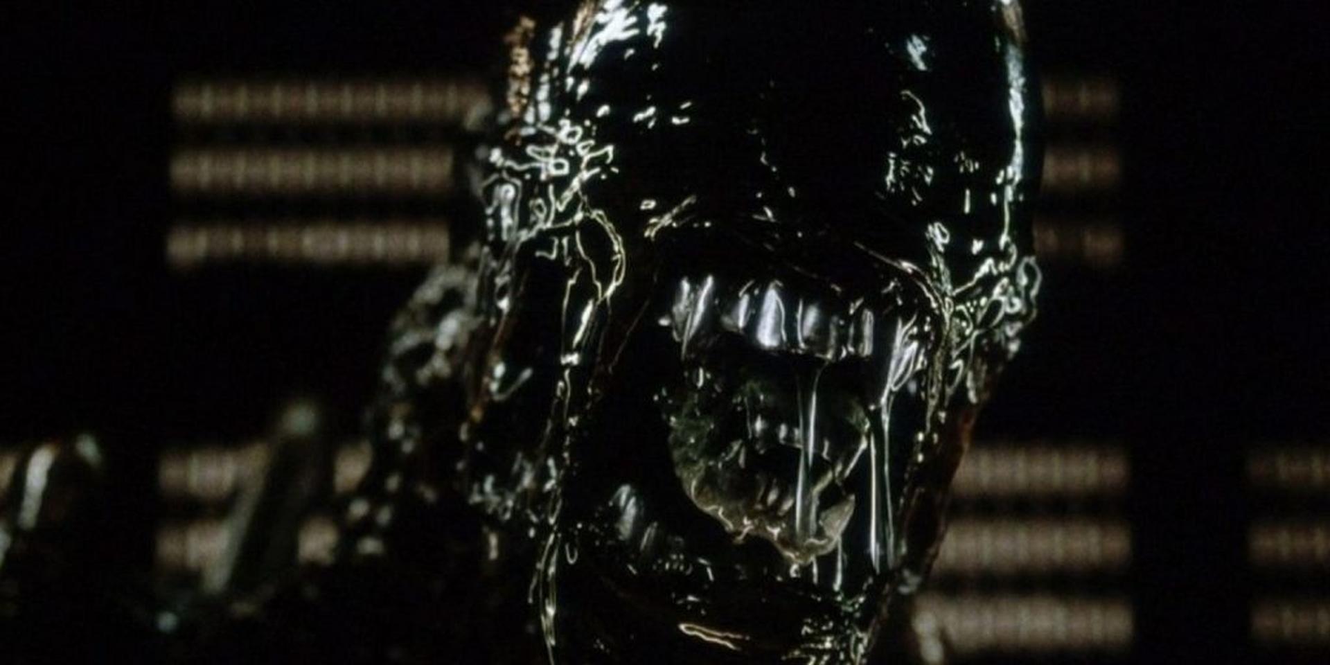 Alien7-1024x512.jpg