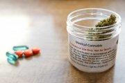 Medyczna marihuana w aptekach już od 17 grudnia – gdzie będzie można ją kupić?
