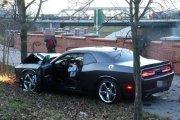 Pracownik zabrał auto klienta na rundkę. Skończył na drzewie