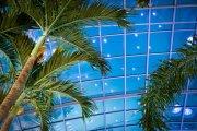 Wakacje w tropikach. Największy park wodny w Polsce podał datę ponownego otwarcia