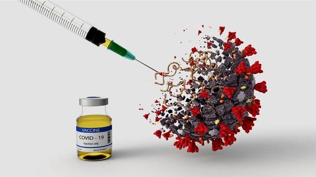 small koronawirus-szczepionka.jpg