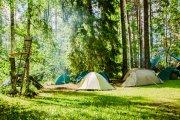 Majówka nie w hotelu, ale w namiocie. Rusza program 'Zanocuj w lesie'